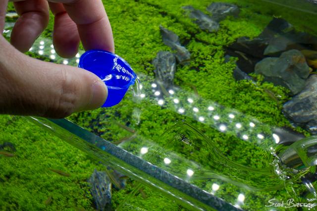 藍藻 オキシドール