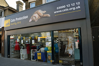 Cats Protection Southend-on-Sea shop