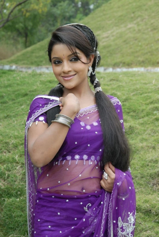 Cute Anchor Wallpapers Tamil Actress Padmini Beautiful Purple Saree Photoshoot