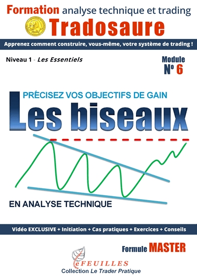 biseaux-trading-formation-video