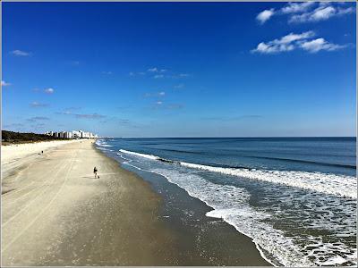 January 16, 2019 Walking the beach on a beautiful day.