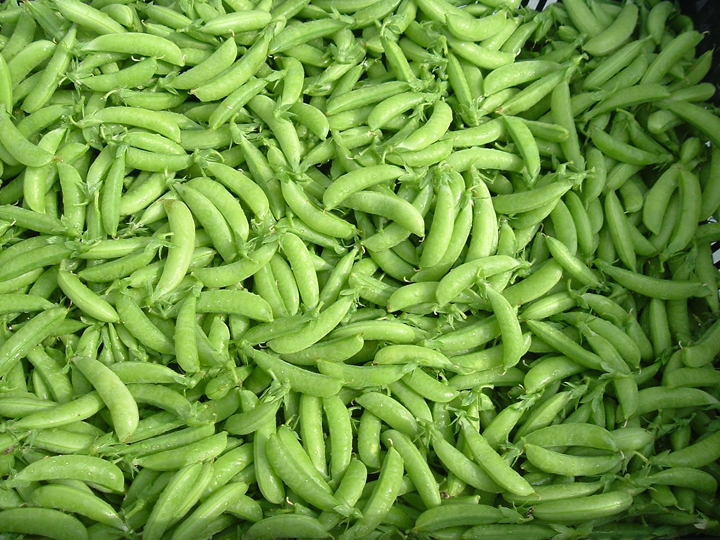 If You Were Around Then Lucky Enough To Get 2 Pounds Of Sugar Snap Peas In Your First Share