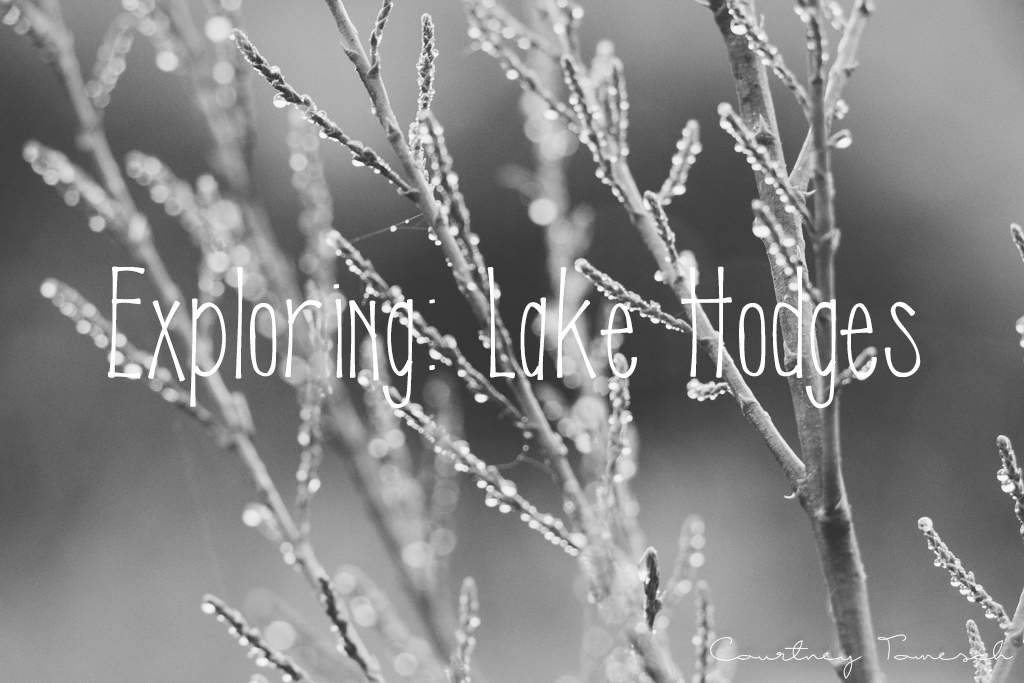 Courtney Tomesch Lake Hodges Escondido California