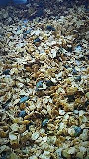 Granola maison multigraines
