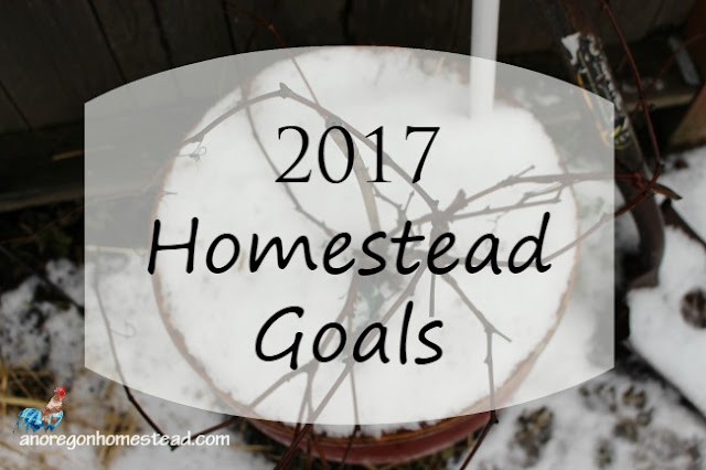 It's that time again. Time to dream and start putting pen to paper and writing down those new years goals. Here are my goals for 2017.