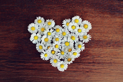 apprendre-a-aimer-nos-defauts-comme-nos-qualites