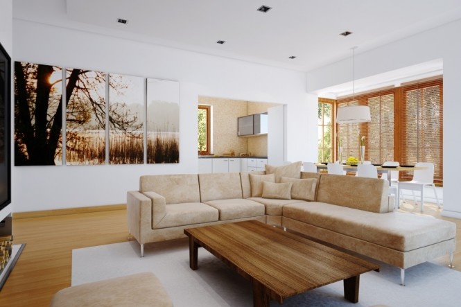 Living Room Design Photos