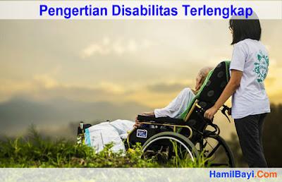 Pengertian Disabilitas Terlengkap menurut WHO, PBB, KBBI, dan Lainnya