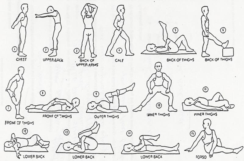 Save Loring S Figure Ballistic Stretching Vo2 Max Zumba