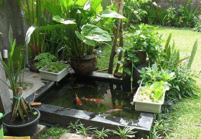 Tips memperindah rumah, Kolam Unik Bikin Pandangan Susah Berkutik