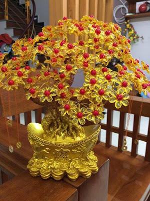 cây thần tài ( chiêu tài ) hoa đá hút tài lộc may mắn vào nhà
