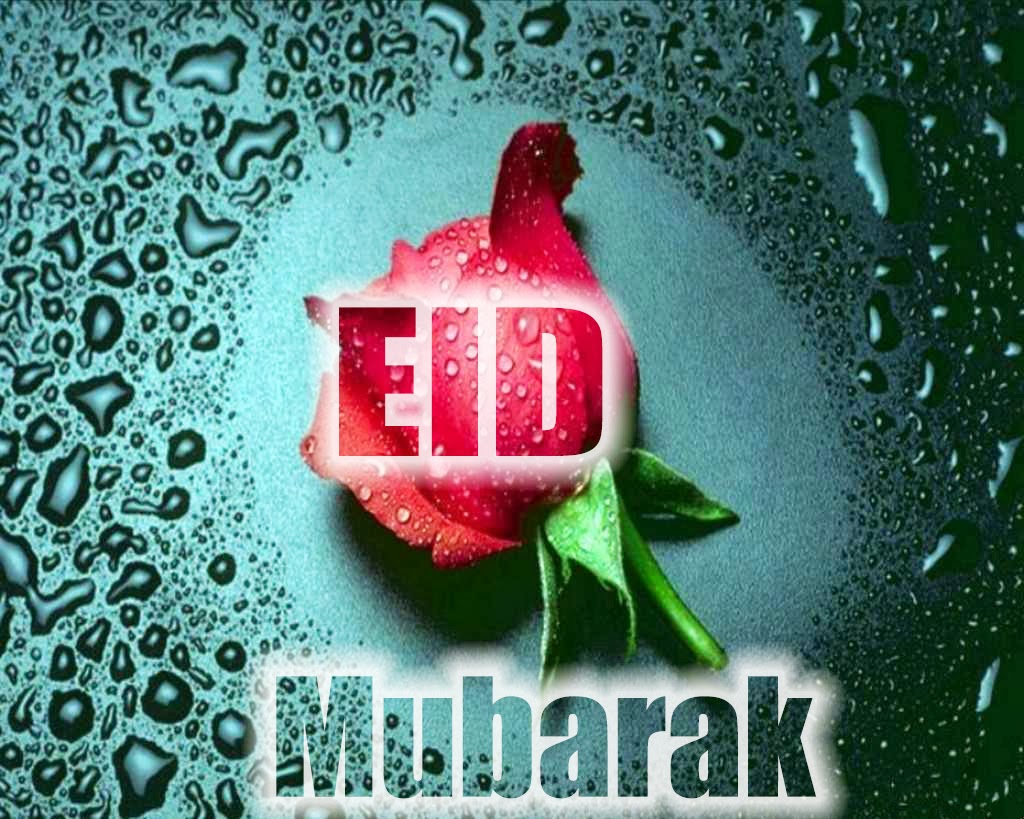 special and latest eid mubarak greeting e cards