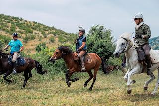 Albania, laukkakisa