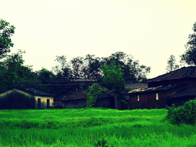 Verdant countryside. Valwanda. Maharashtra. India