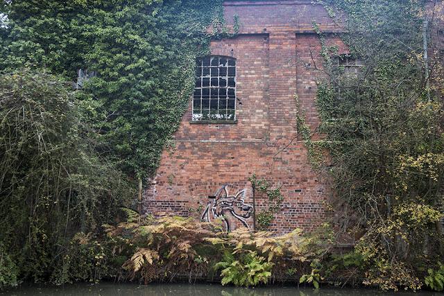 A Cheeky Fox - I really love this bit of local graffiti