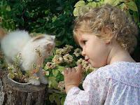 Imágenes de Gatitos con Flores