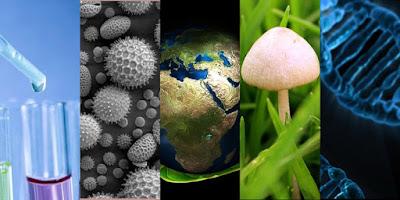 Discurso de graduación de la XIX Generación de Biología