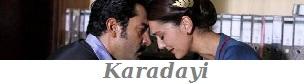 Ver karadayi online hablado en español