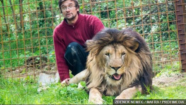 Man Killed By Lion He Kept As Pet