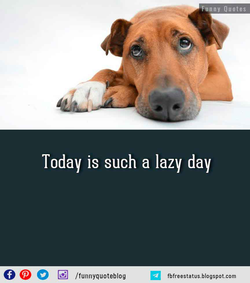 Today is such a lazy day. Happy Sunday.