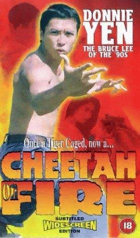 Poster Of (18+) Revenge Of The Cheetah 1992 UnRated 480p DVDRip Dual Audio