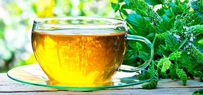 Nane Çayının Faydaları Nelerdir - www.viphanimlar.com