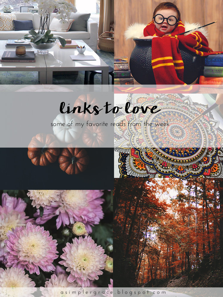 A post featuring my favorite reads from the week.  #linkstolove #fridayfavorites - Links to Love | 74 - A Simpler Grace