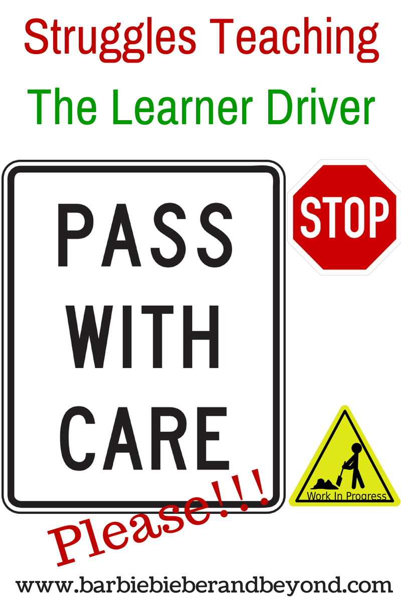 Teaching the Learner Driver