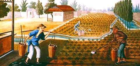 Perubahan Pertanian
