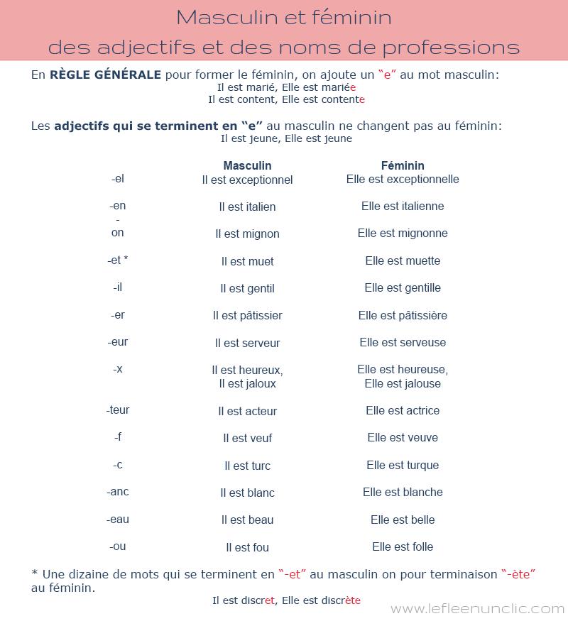 Masculin et féminin des adjectifs et des noms de professions, FLE, Le FLE en un 'clic'