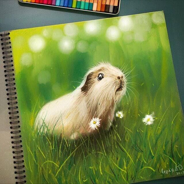 03-Guinea-Pig-Cute-Animals-Анастасия-Серая-www-designstack-co