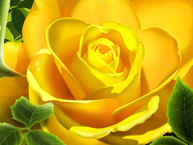 3D žuta ruža download besplatne pozadine za desktop 1600x1200 biljke