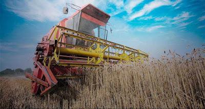 CNA prevê alta de 2% no PIB do agronegócio e de 4,3% no valor da produção em 2019