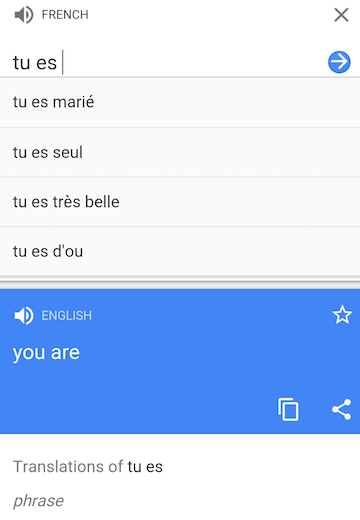 Google Translate Autocomplete