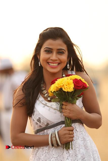 Misimi Telugu Movie Stills  0001.jpg