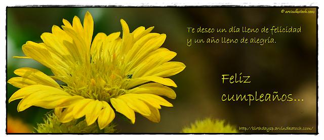Tarjeta de cumpleaños, flor amarilla, felicidad, lleno, alegría, Spanish, Birtdhay Card