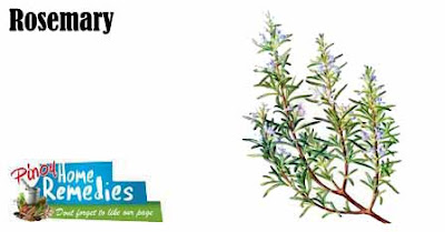 Top 10 Foods That Help You Smell Nice: Rosemary