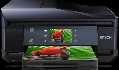 Download Driver Printer Epson Expression Premium XP-800