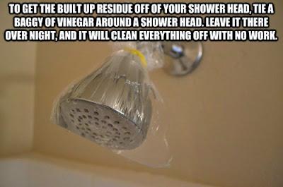 http://3.bp.blogspot.com/-0ookunKTI6g/U2HT_KlkIDI/AAAAAAAAF2A/jqJ4BMjlwRc/s1600/Tips---Cleaning+a+Shower+Head+with+a+Baggie+and+Vinegar.jpeg