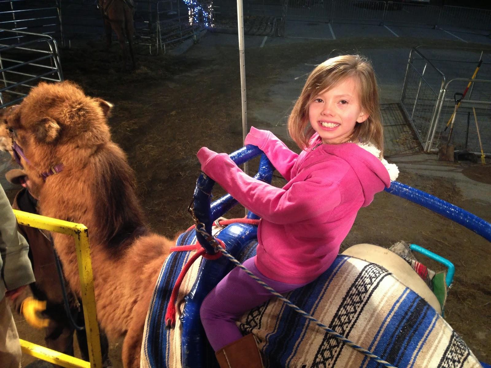 riding a camel, road trip