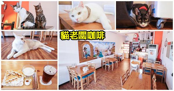 《台中.大里》貓老闆咖啡|寵物主題友善餐廳|平價美食|5個可愛的貓老闆陪客人用餐