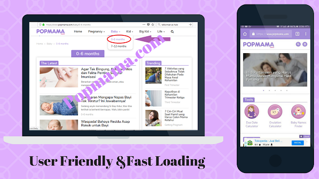 User Friendly & Fast Loading