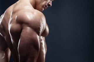 membentuk otot dengan mengonsumsi suplemen fitnes