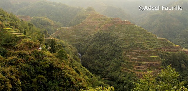 2019 Travel Guide: A Quick Trip to Sagada and Meeting Apo Whang Od for Just 3 Days