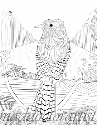 Click here to download the PDF of this blue jay to print and colour!