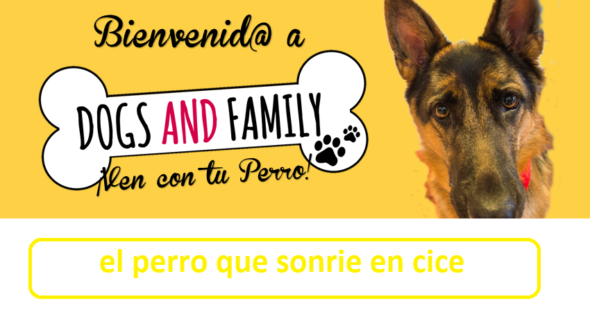 dogs and family -el perro arcoiris que sonrie en cice