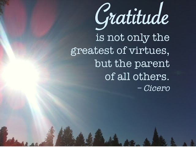 -Greatest of Virtues-How to Fuel Your Life with Gratitude to Enjoy More