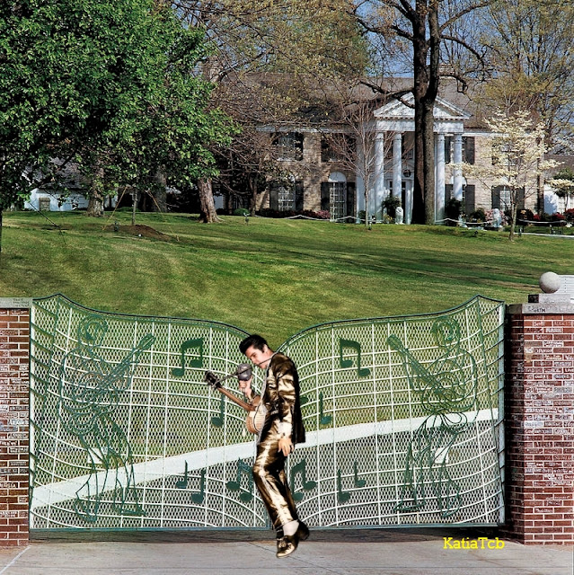 elvis photo graceland
