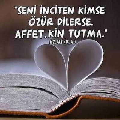 seni inciten kimse özür dilerse, affet, kin tutma, hz Ali, halife, komutan, Allah'ın aslanı, Allah'ın kılıcı, kalp, kitap, güzel sözler, özlü sözler, anlamlı sözler