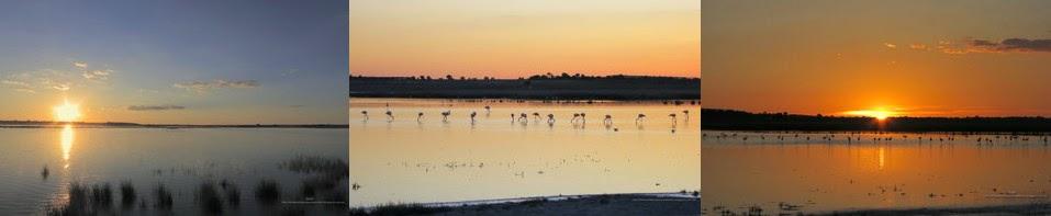 http://diversidadyunpocodetodo.blogspot.com.es/2013/09/fondos-pantalla-wallpapers-naturaleza-paisaje-puesta-sol-manjavacas-1.html